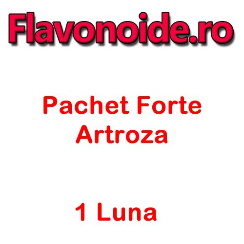 Pachet Artroza 1 Luna Forte