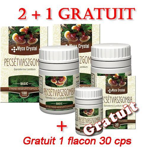 Ciuperca Ganoderma Lucidum 100 capsule 2 +1x 30 Capsule Gratuit